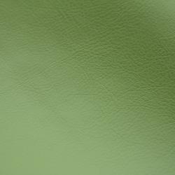 Favorit green