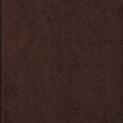 Antares 0435
