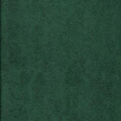 Antares 1142